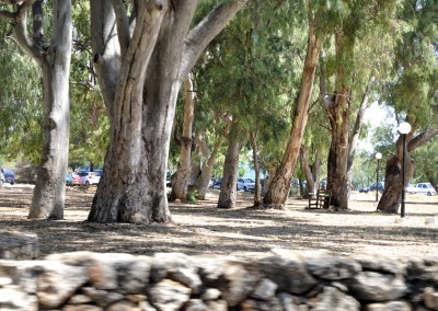 Strandområdet bag Agii Apostoli 2015